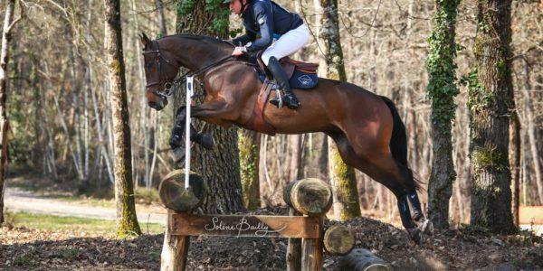 De belles victoires pour la rentrée à Saumur